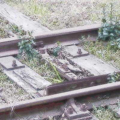 廃線と雑草(春海橋わき)
