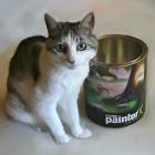 ペインタ缶